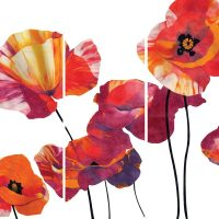 Simon Howard Poppies