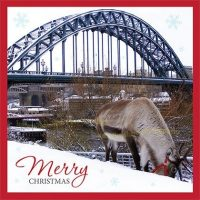 Tyne Bridge Newcastle Christmas Card Reindeer