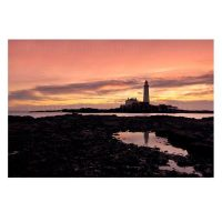 St Mary's Lighthouse Photo Print by Daniel Dent