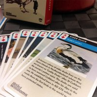 Great Northern Beasts Playing Cards