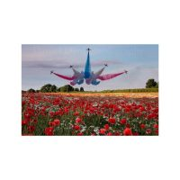 Sunderland Red Arrows Print