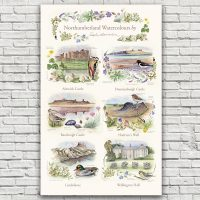 Northumberland Watercolours Tea Towel