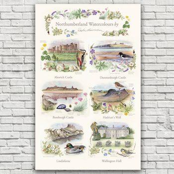 Northumberland Watercolours Tea Towel