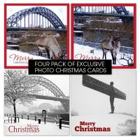 Newcastle Winter Photo Christmas Cards