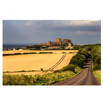 Photo Card Bamburgh Castle Corn Fields